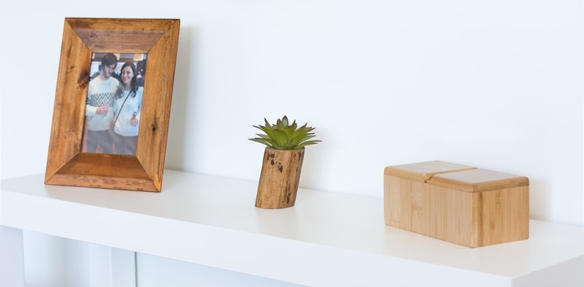 tiny tree branch planter for a faux succulent or air plant