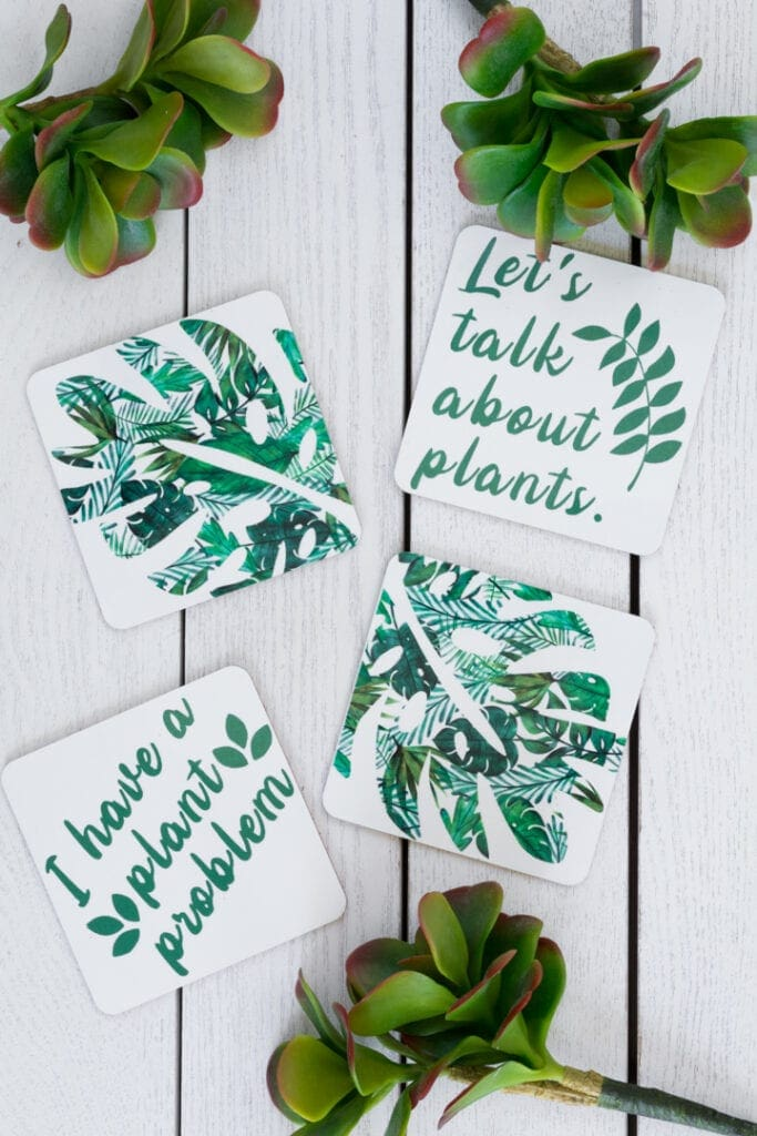 plant-themed infusible ink coasters made using a Cricut Explore Air 2