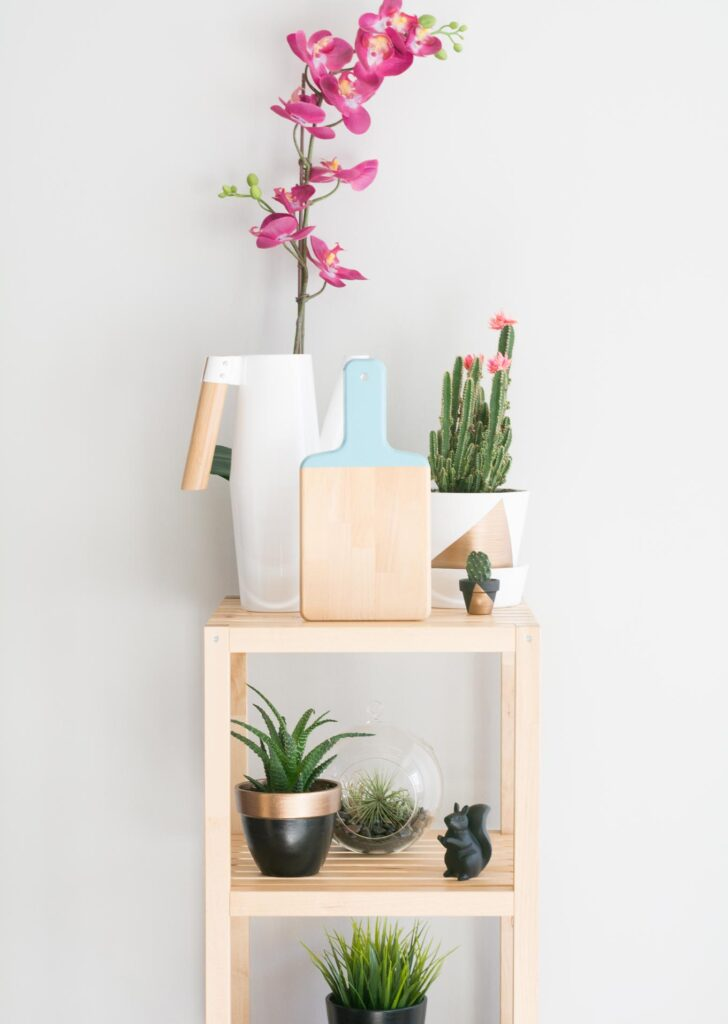 painted cutting board on open shelving with plants and a watering can
