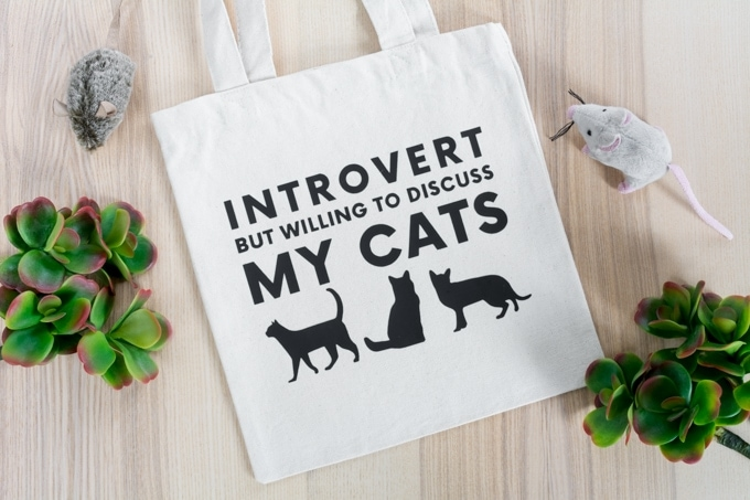 tote bag that says introvert but willing to discuss cats
