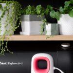 Cricut EasyPress Mini Tutorial & Using Iron-On With Wood