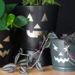 3 Free Pumpkin Face SVG Files for Halloween Decor