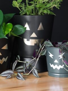 free jack-o-lantern SVG cut files on planter pots
