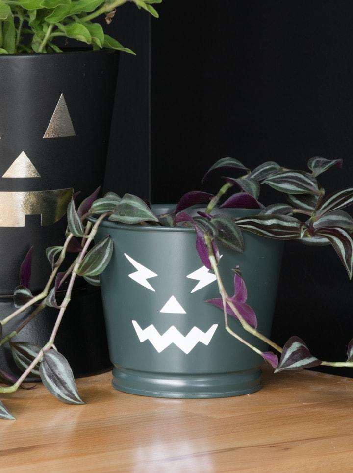 free pumpkin face SVG cut files on planter pots