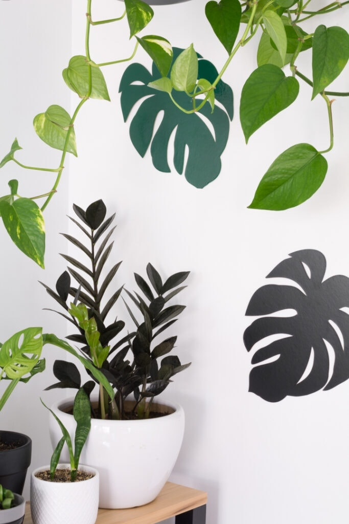 chipboard monstera leaves cut out on a Cricut Maker and stuck up on a wall for decor in a modern workspace