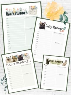graphic about free printable planner pages with time slots including images of planners