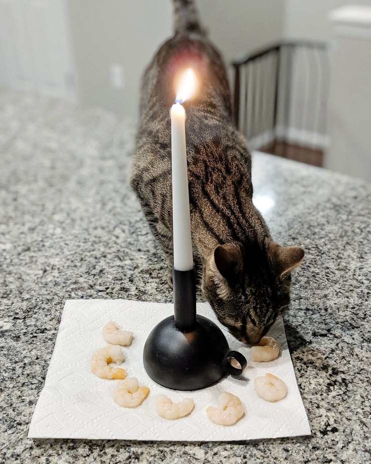 cat eating shrimp from around a candlestick