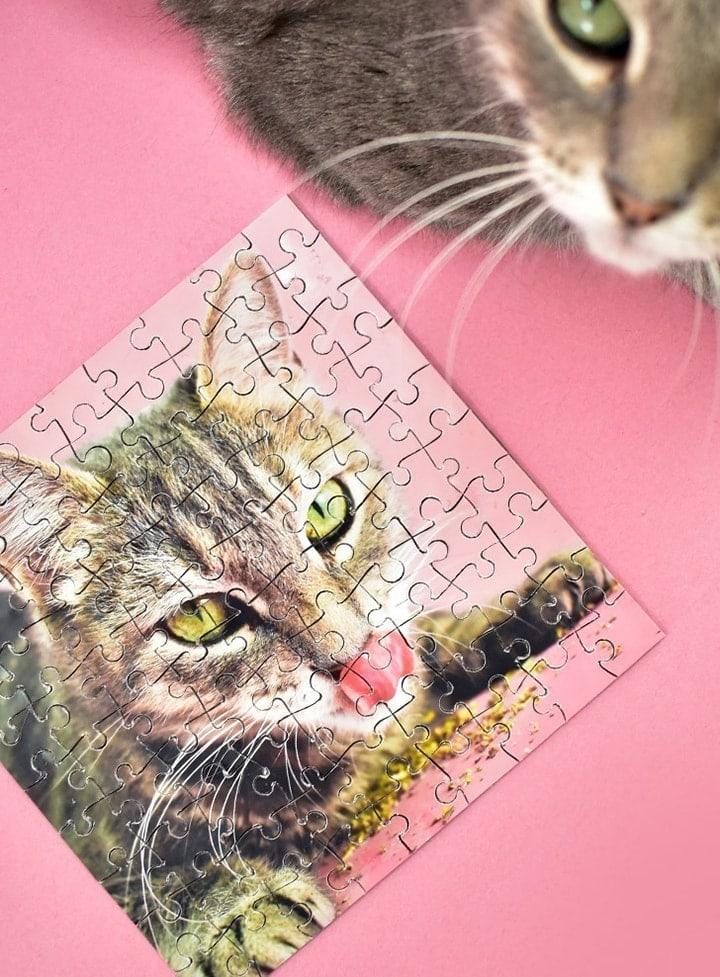 chipboard DIY puzzle made using a Cricut machine