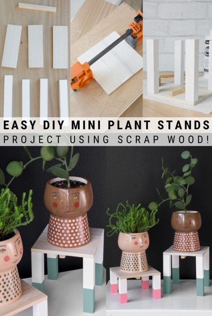 pinnable graphic about how to make painted mini plant stands including photos and text overlay