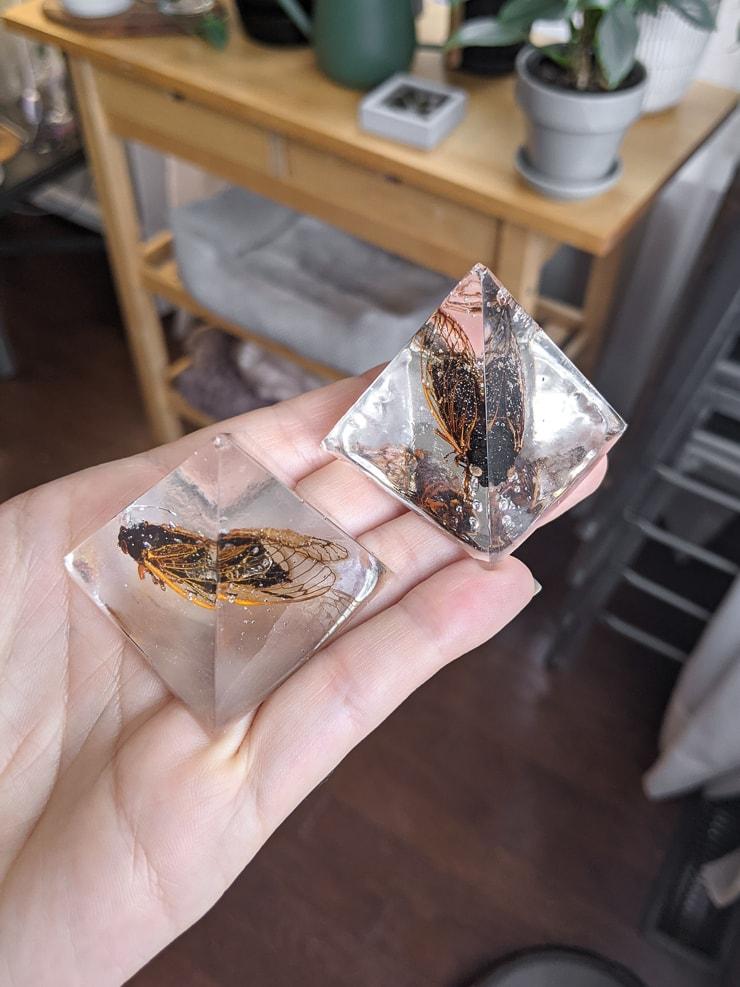 cicadas encased in resin pyramids