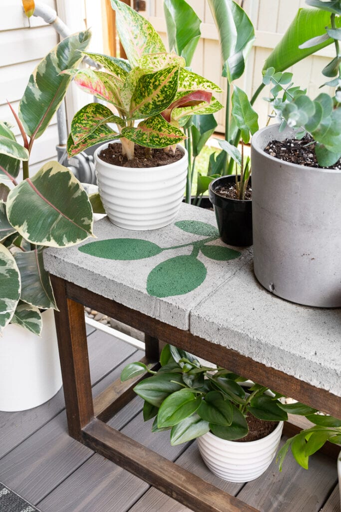 plants on a deck with a painted concrete paver